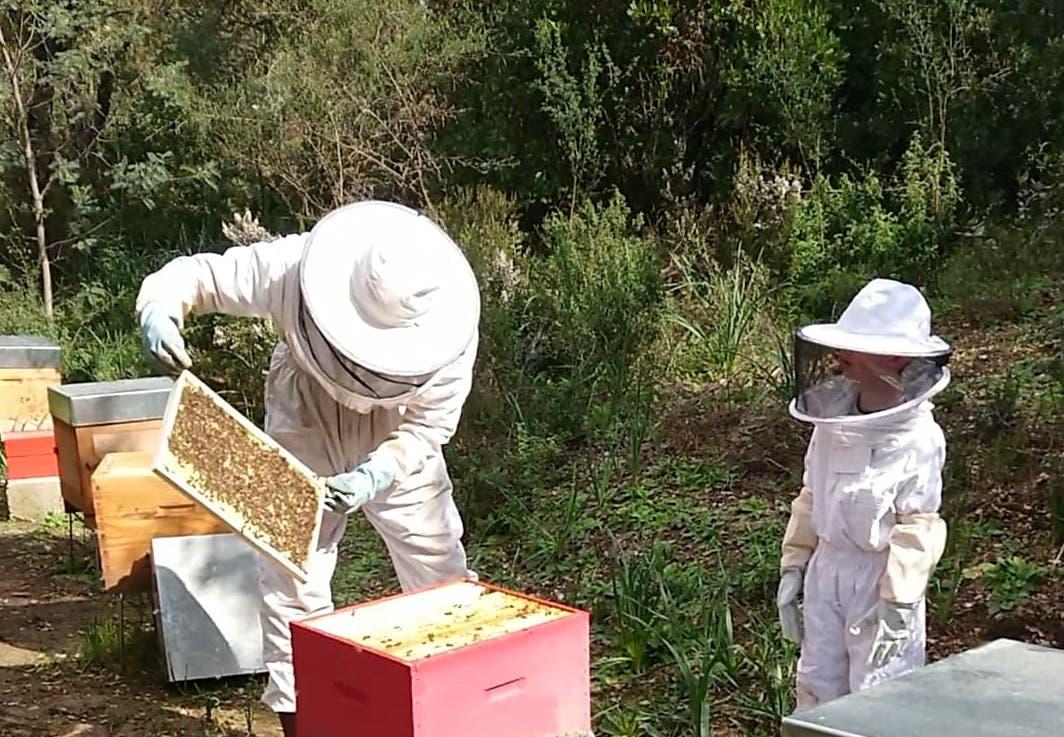 apiculteur avec un enfant